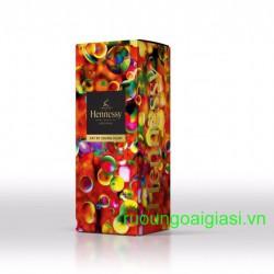 Hennessy VS Gift box 2020