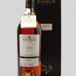 Camus Vintage 1980